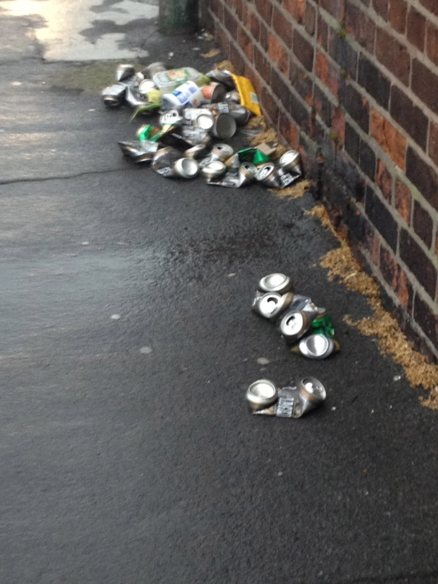 Busy walkway.Submitter cleaned up the glass bottles himself: fair play -> St Patricks Pde, Drumcondra, D9. Oct 18 2013