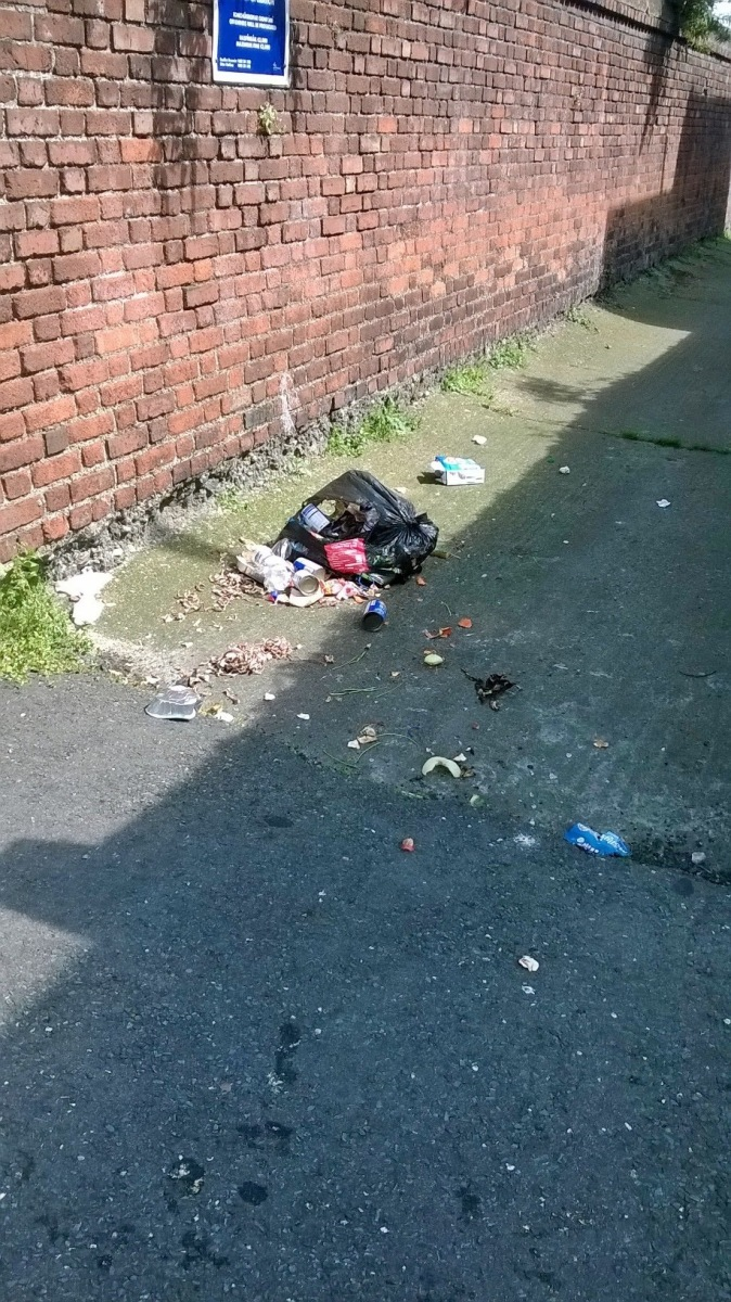 100s of ppics of this dump-lane now,from 1 legend  trying to help w civic duty.Support from DCC:zero -> Phibsboro, D7. May 18 2018